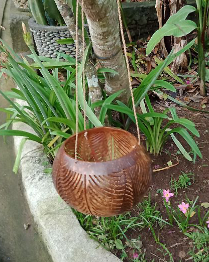 Flowerpot coconut polished/carved. Art. code: CCB007. Size Diameter aprox 13-15 cm. Price FOB 3,20 usd.