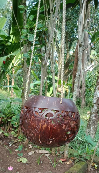 Flowerpot coconut polished/carved. Art. code: CCB008. Size Diameter aprox 13-15 cm. Price FOB 3,60 usd.