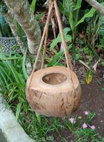 Flowerpot coconut polished. Art. code: CCB009. Size Diameter aprox  cm. Price FOB 1,80 usd.