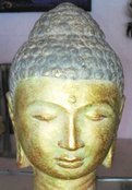 Buddha head in cement. Size H22 cm. Price FOB 3,65 usd excl packing. Art. code: CP088.